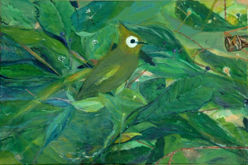 Groene vogel 2012